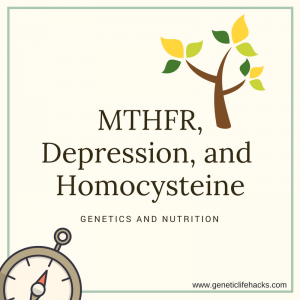 MTHFR polymorphisms, depression, and homocysteine -- study showing response to supplements