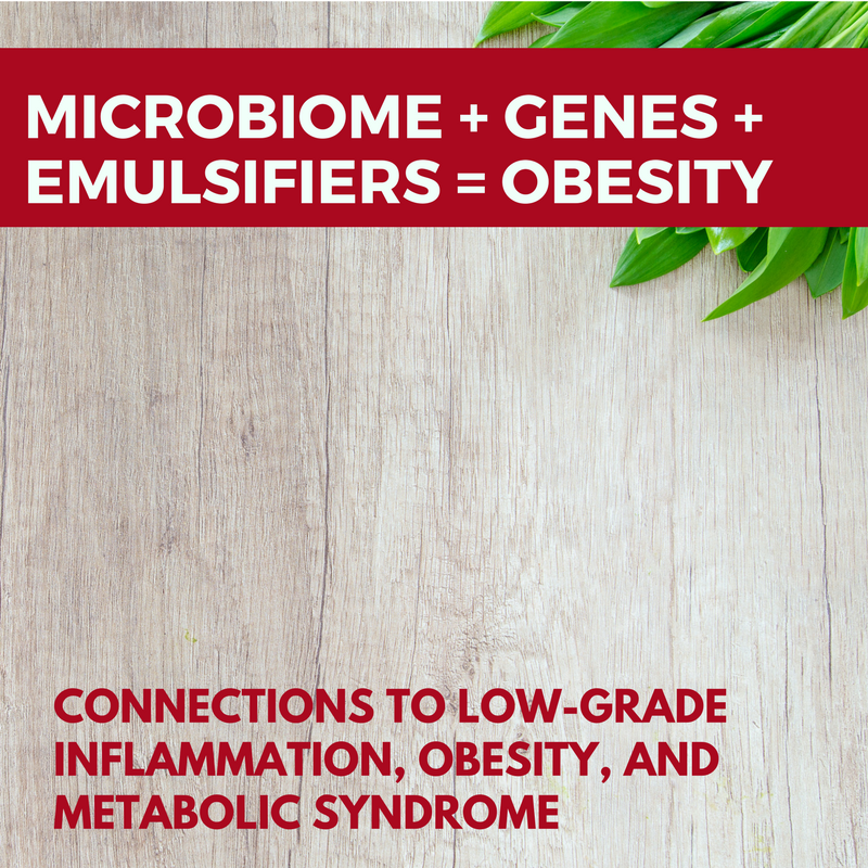 Microbiome + genetics + emulsifiers = obesity – Genetic ...